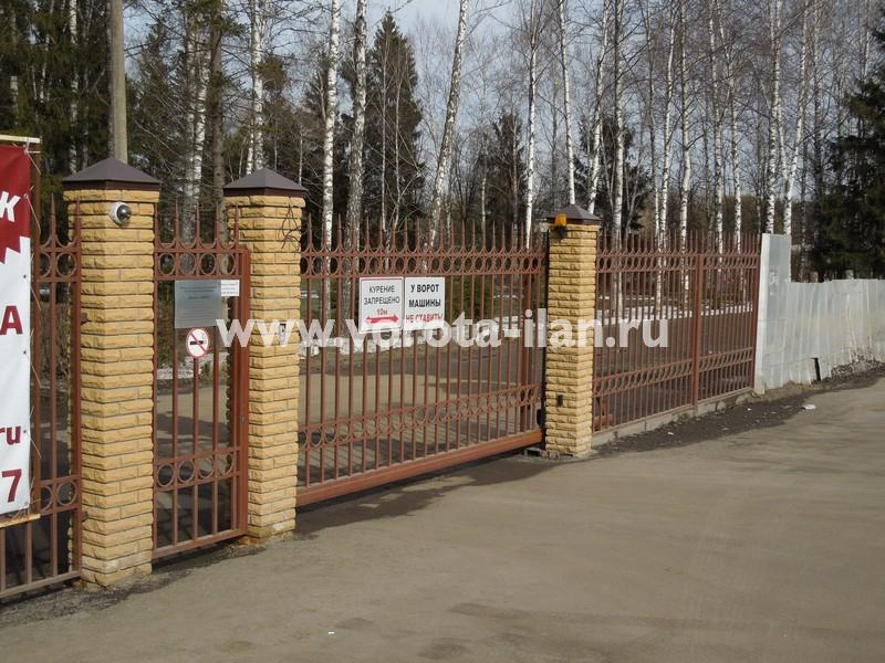 забор кованый 1 Ника.jpg