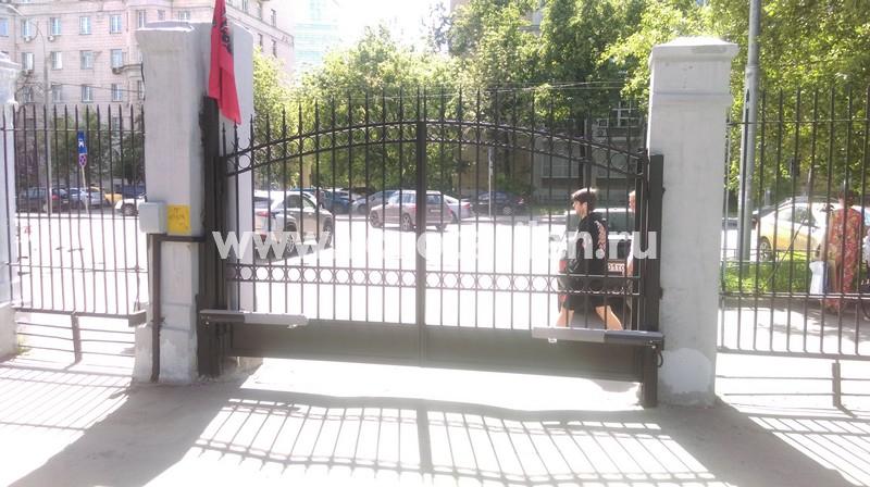 Распашные ворота прозрачные чёрные_фото 2